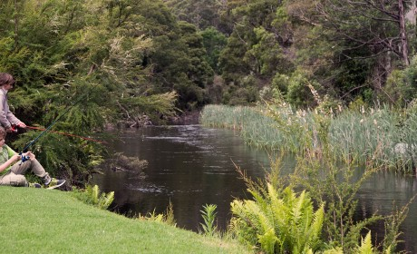 About Warburton Holiday Park on the Yarra River