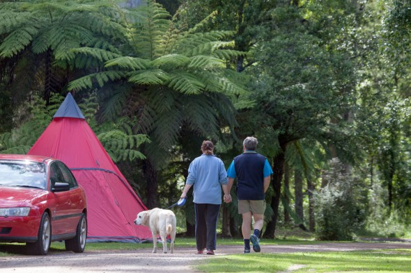 Warburton-Holiday-Park-pet-friendly-camping-IMG_2928-1020X680